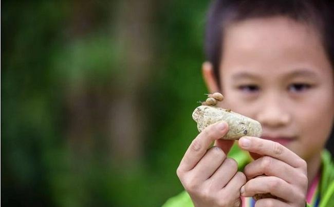 上海前小桔创意农场